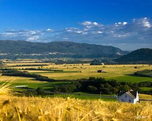 Rural 3 by Obtenebratio