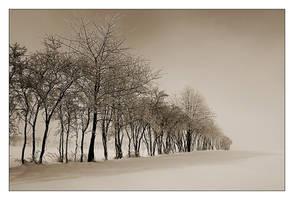 winter by AntekPyra