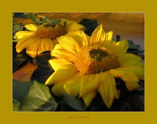 sunflowers by poppyflower