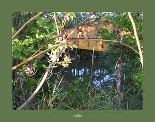 bridge by poppyflower
