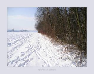 Spuren im Schnee by poppyflower