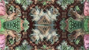 Experimental XXXVI: genIFS by hypex2772