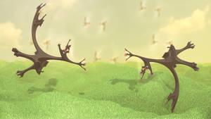 Wild Birds