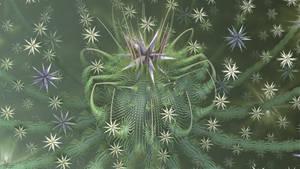 La Pollinisation