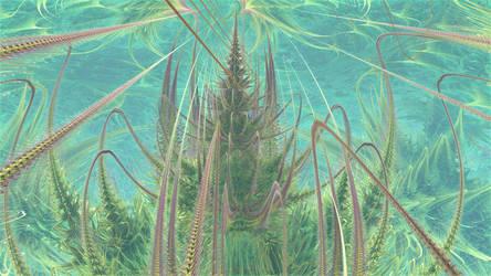 Aquatic Plants by hypex2772