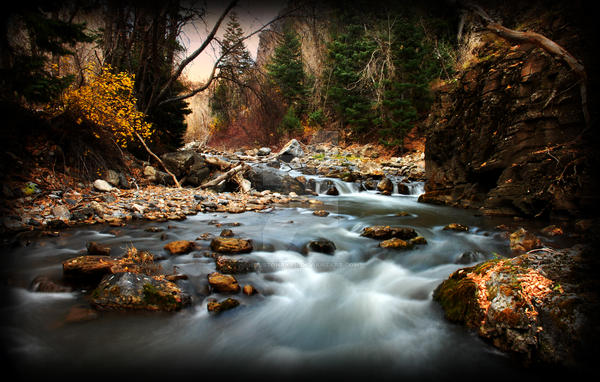 American Fork River Fall Blur by houstonryan