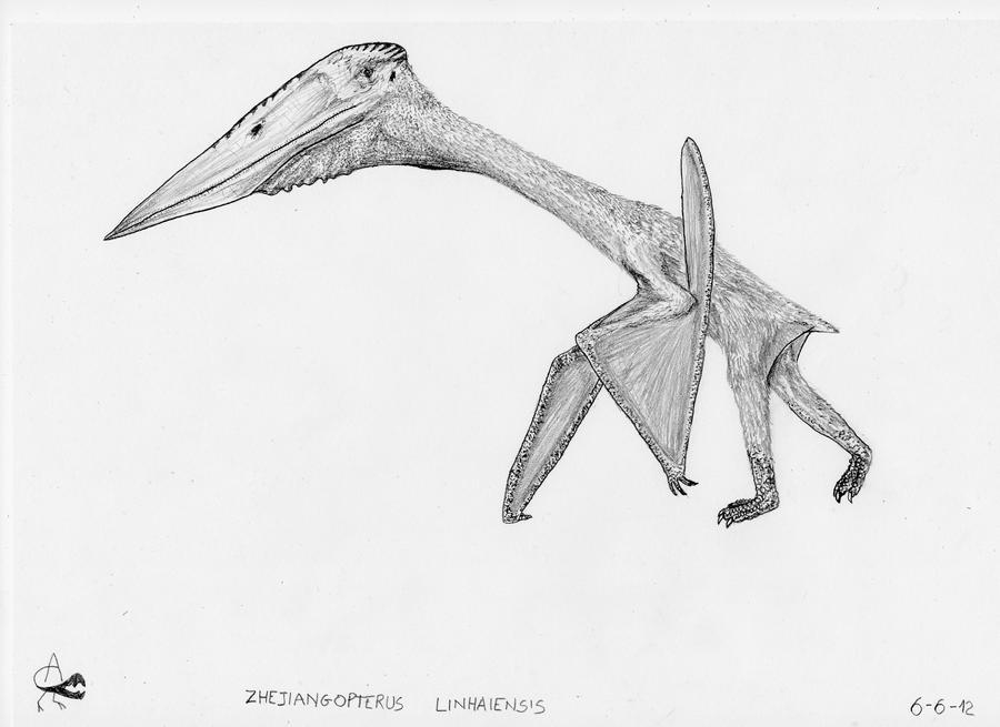 Zhejiangopterus linhaiensis