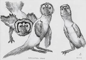 One animal, three shapes by Xezansaur
