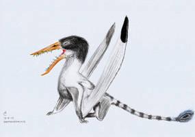 Rhamphorhynchus by Xezansaur