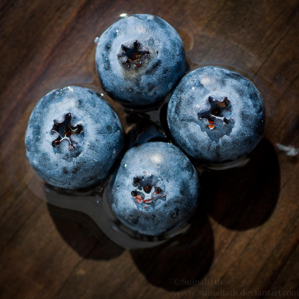 Blueberries by Suinaliath