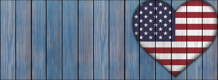 USA Banner By Consigned 2 Oblivion