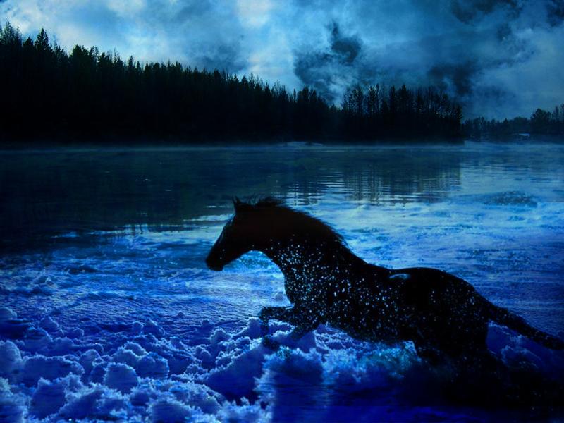 Ice Horse Wallpaper by arvoitusmeri on DeviantArt