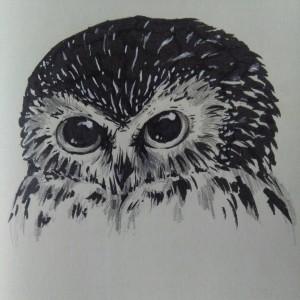 UnhappyOwl's Profile Picture