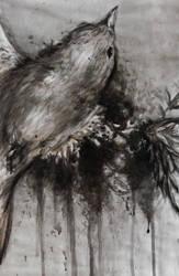 Destruction - Dead Bird