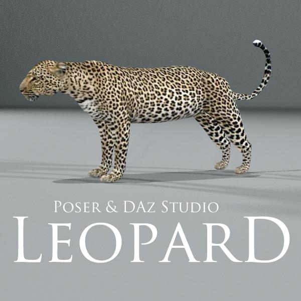 Leopard by adamthwaites