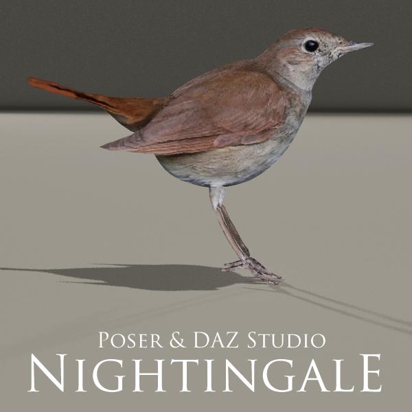 Nightingale by adamthwaites