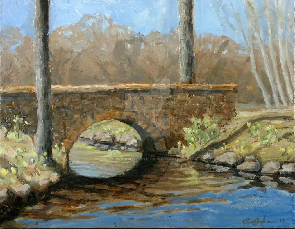 Spring Bridge  by EdwardBagdonas