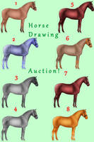 OPEN Horse Auction! (drawing) by SUGARandSPICE1