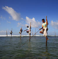 Stilt fishermen of Sri Lanka by Suppi-lu-liuma