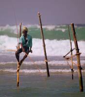 Stilt fishermen of Sri Lanka 5 by Suppi-lu-liuma