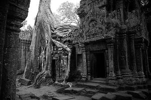 Ta Prohm by Suppi-lu-liuma