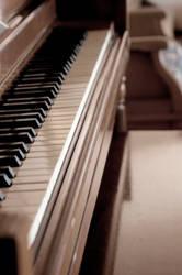 Lonely Serenade