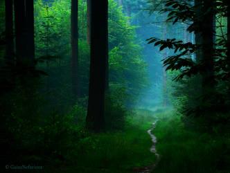 The Chosen Path by GaiusNefarious