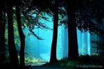 The Blue road by GaiusNefarious