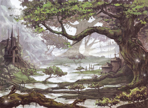 Old trees and little lakes