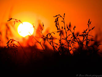 Sunset in Vama Veche by felinablueeyes