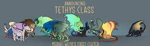 Meraki's First Clutch - Tethys Class