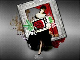 Red Rose by DaNaT-DuBai
