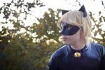 Chat Noir Cosplay, Miraculous Ladybug