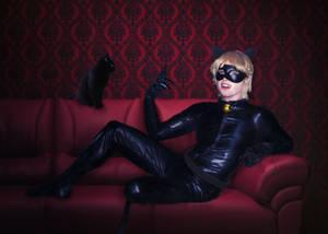 Cat Noir Cosplay, Miraculous Ladybug