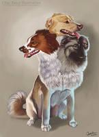 Fantasy Pet Portraits by CharReed
