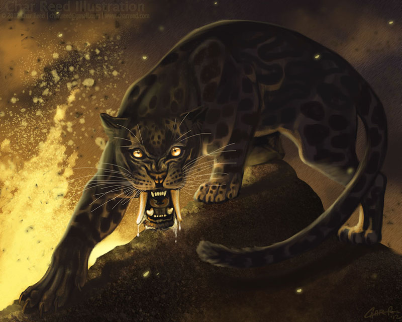 Ash Leopard by CharReed
