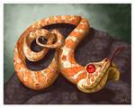 Hognose Snake Caricature