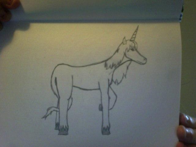 The last Unicorn by Sexy-Slender-Dragon