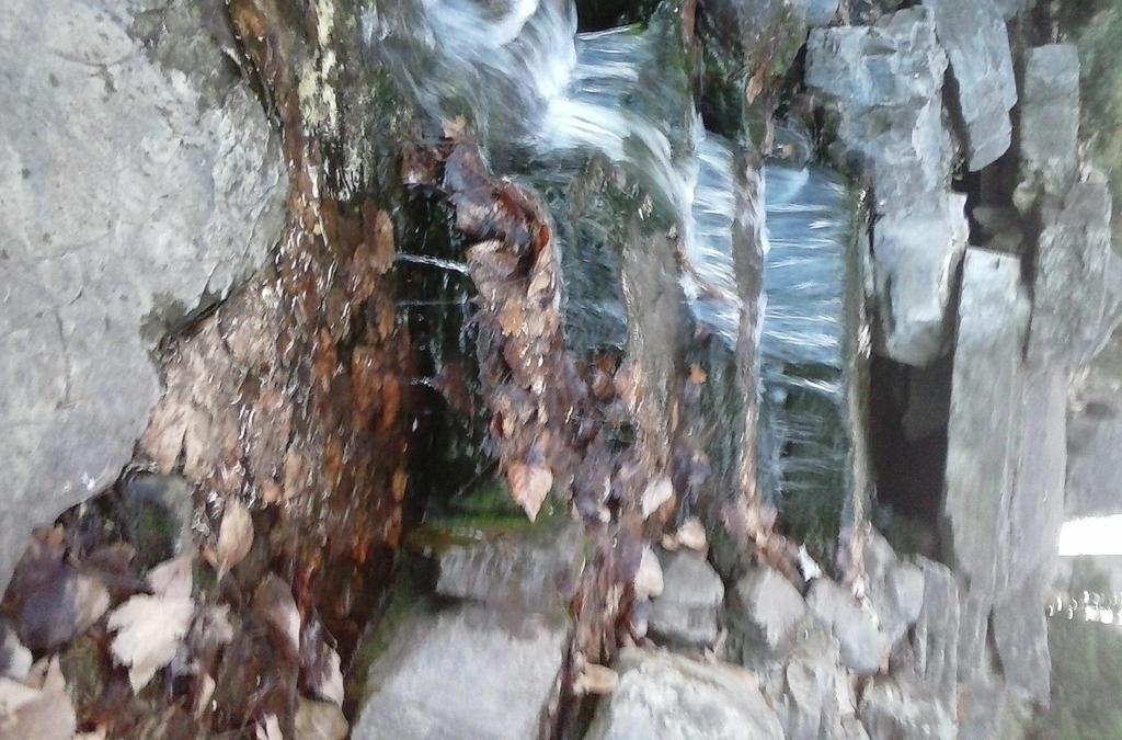 Woodland mini waterfall by Sexy-Slender-Dragon