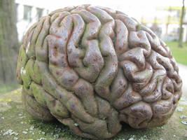 brain by Nakeithia
