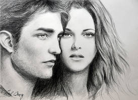 Robert and Kristen in Twilight by noeling