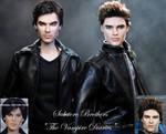 Vampire Diaries Stefan and Damon doll repaints