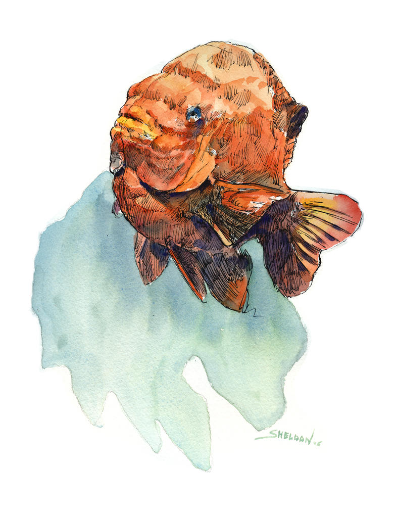 Fish watercolor by sheldonsartacademy on deviantart for Watercolor fish painting
