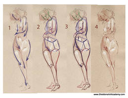 Tutorial - Figure Drawing 02 by sheldonsartacademy