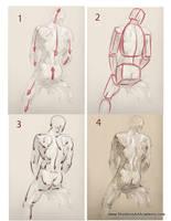 Tutorial - Figure Drawing 03 by sheldonsartacademy