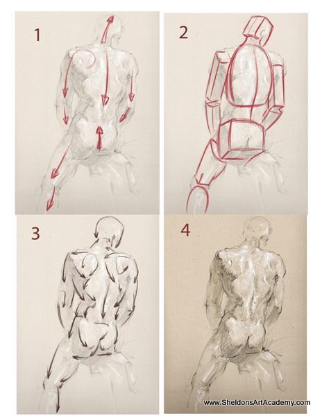 Tutorial - Figure Drawing 03 by sheldonsartacademy on DeviantArt