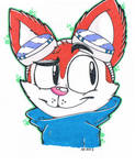 Blinx The Timeweeper