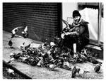 The Pigeon man.