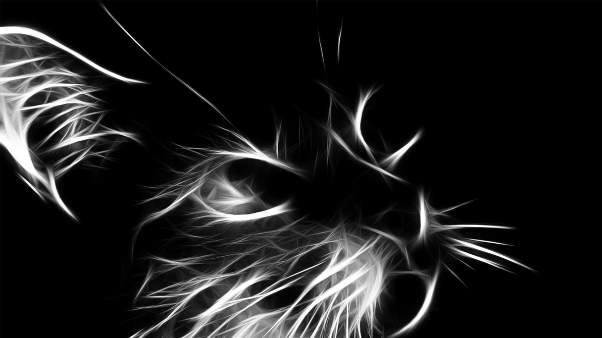 fractal_cat_by_drewzi-d4828nw