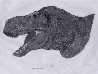 Tyrannosaurus head1 by Dinomorph5000
